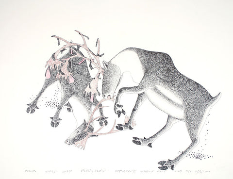 Untitled (Fighting Caribou)