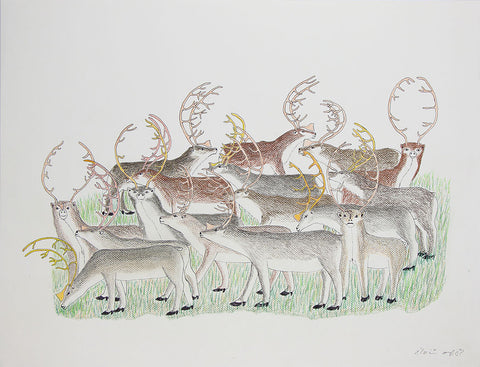 Untitled (Herd of Caribou)