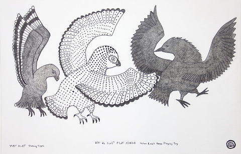 Falcon & Owl Raven Playing Tag by Qiatsuq Ragee 113 Artist from Cape Dorset, 2016