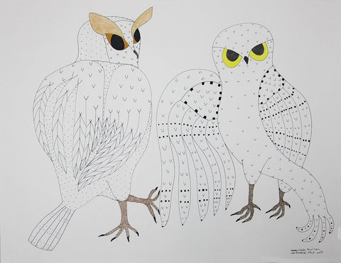 Untitled (Owls) by Ooloosie Saila 400 Artist from Cape Dorset, 2017