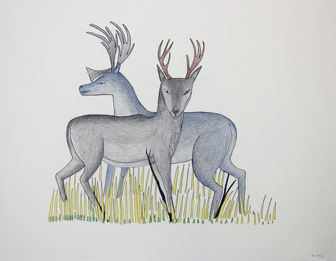 Untitled (Two Caribou)