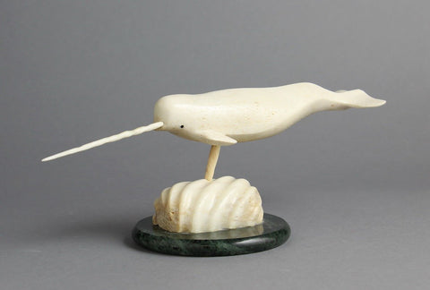 Ivory Narwhal