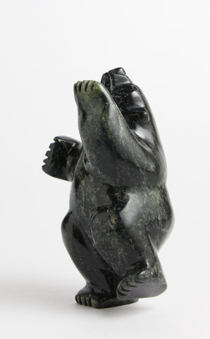 Dancing/ Diving Bear