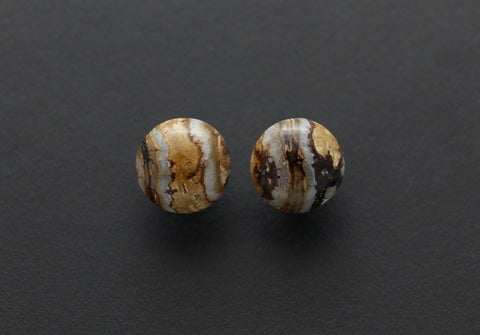 Large Mammoth Tooth Earrings