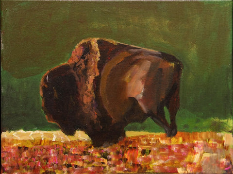 Untitled (Buffalo)