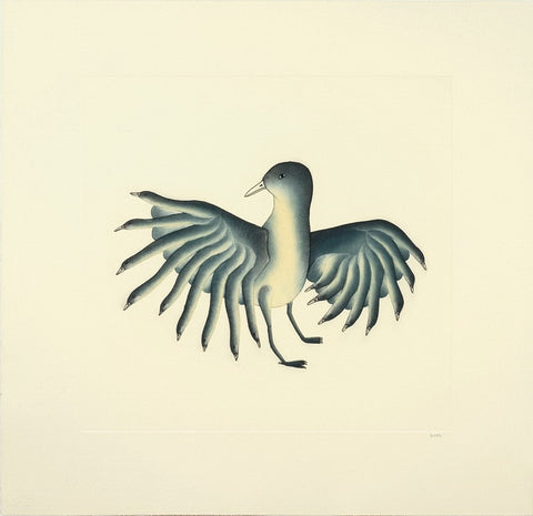 Shorebirds, Cape Dorset  2011