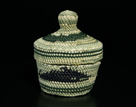 Green Whale Basket
