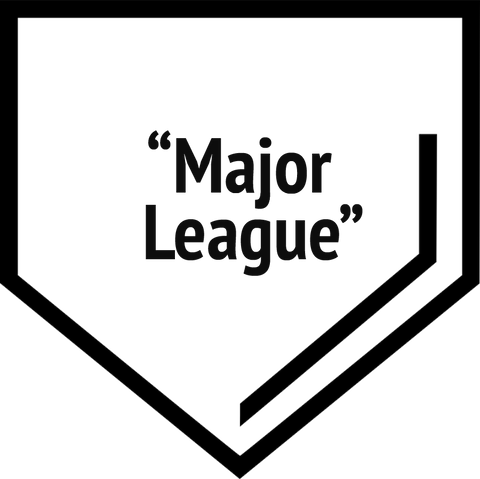 """Major League"" Level Package (includes a facetime/zoom call with a minor leaguer of your choice!)"