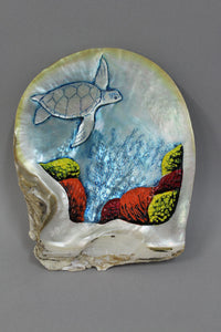 Brendan O'Connor - Pearl Shell Turtle and Reef