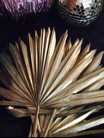Dried Large Gold Palm Spear