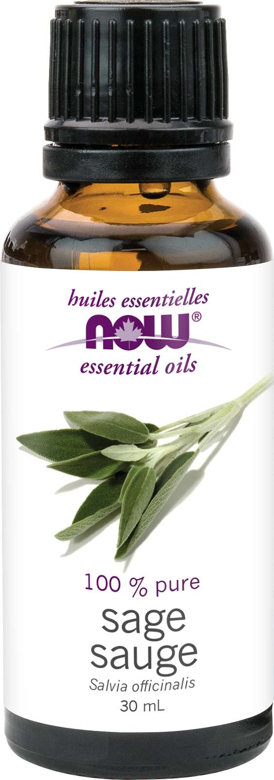 Sage Oil (Salvia officinalis)30mL
