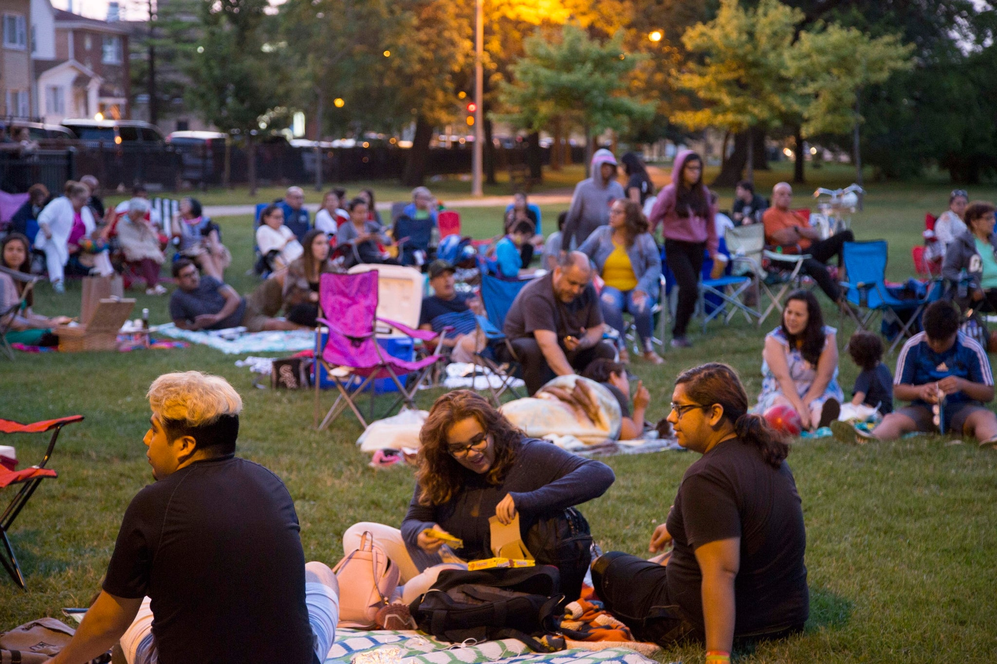 Films in the Park