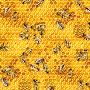 Honeybees and Beehives