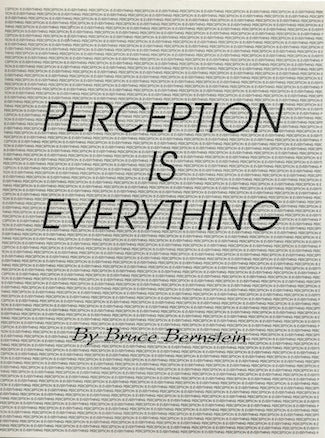 Perception is Everything by Bruce Bernstein - Book