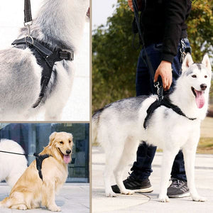 FurFurBuddy™ No Pull Dog Harness