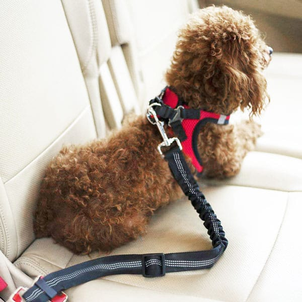 FurFurBuddy™ Pet Seat Belt