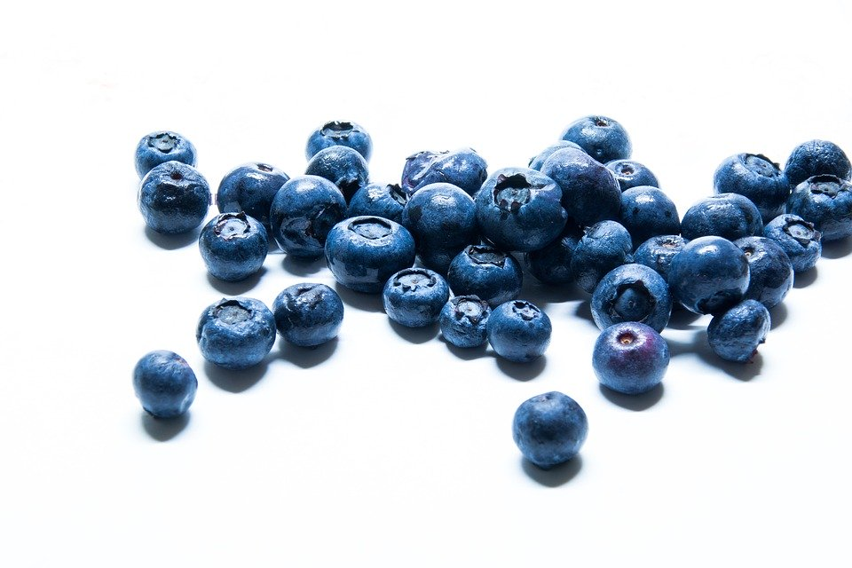 Blueberries - Wild, Frozen 5kg bag