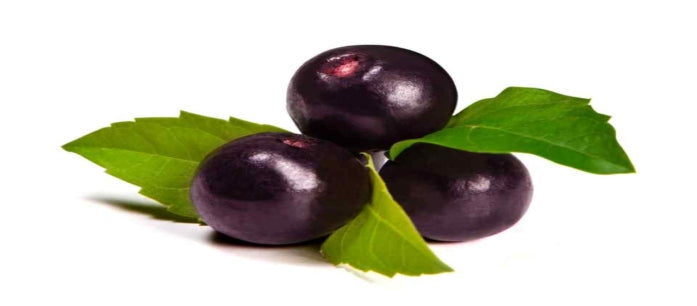 Health Facts: Is Organic Acai Berry Good for You?