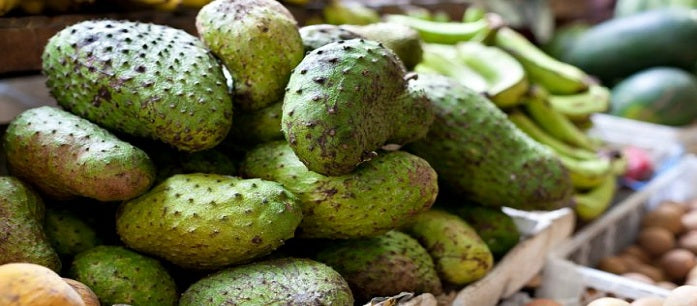 Including soursop fruit in your diet can be an excellent thing for your body. Find out what you can get from every serving of the fruit.