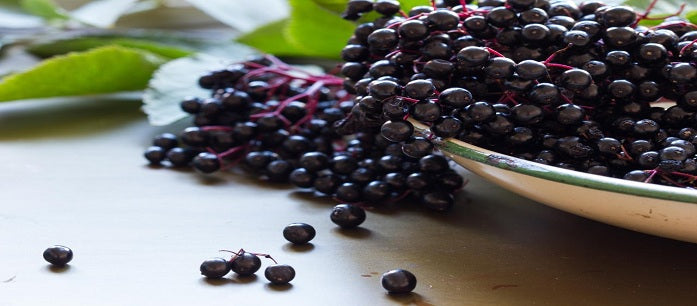 Many people take Acai Berry to lose weight or to look younger than their age, but it has other purposes as well. Here are other uses for Acai Berry.