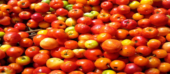 We often think that the acerola cherry can help boost the immune system. However, did you know that there are products of acerola cherry for skin?