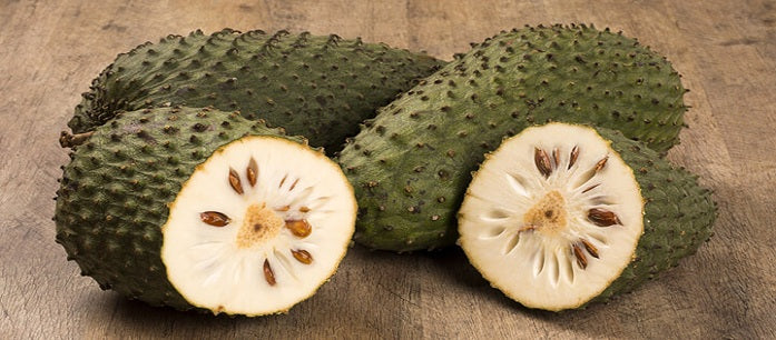 Graviola has been used as a common natural treatment since the time of our ancestors. Find out how they used this tropical fruit to cure diseases.