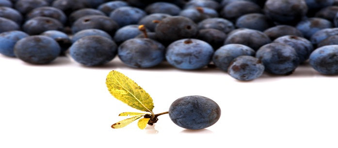 Acai berry supplements have benefits but may interfere with the absorption of drugs. Here's what you need to do if you want to take it with your medicines.