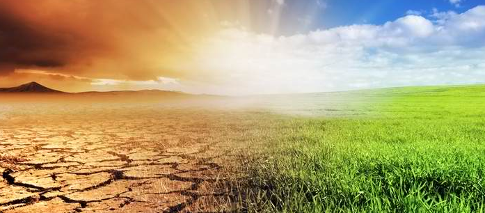 The effects of climate change on health need to be addressed, especially since every year, more people are affected by this phenomenon.