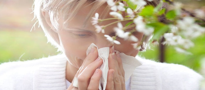 Learning how to treat allergies at home and how to prevent them from happening may come in handy when you or anyone in the family shows any symptoms.