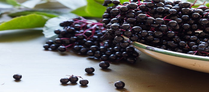 The acai berry puree has a lot of benefits when consumed regularly. Find out if it is safe to give to your children and the benefits they can get from it.