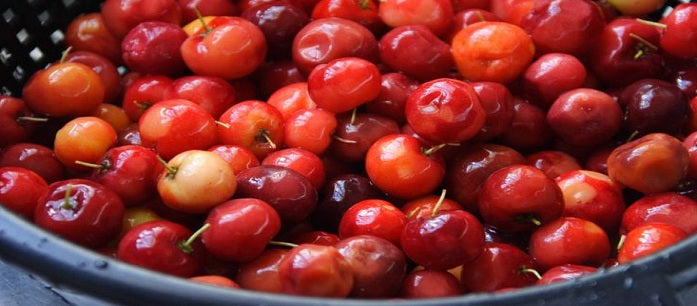 The West Indian cherry superfruit has long been used to treat various health conditions. Find out all about its history and its health benefits.