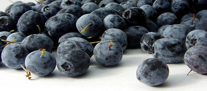 Taking acai berry as a supplement can provide fantastic benefits. However, you have to be smart in choosing a product since it has several side effects.