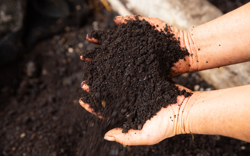 Two hand cusp a big pile of soil