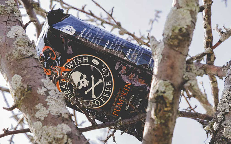 A black and orange bag of Death Wish Coffee Cauldron Aged Pumpkin resting outside in a tree