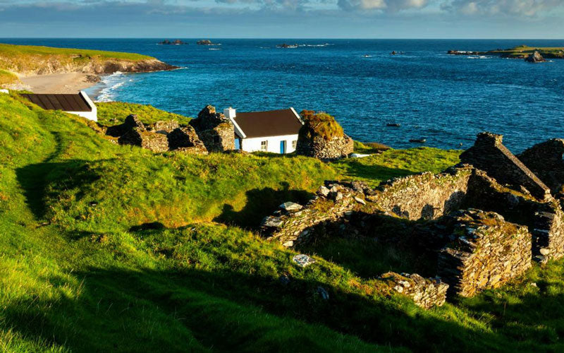 A photo of a white Irish cottage sitting in a green field with the ocean in the background. It's located in Great Blasket Island, Ireland.