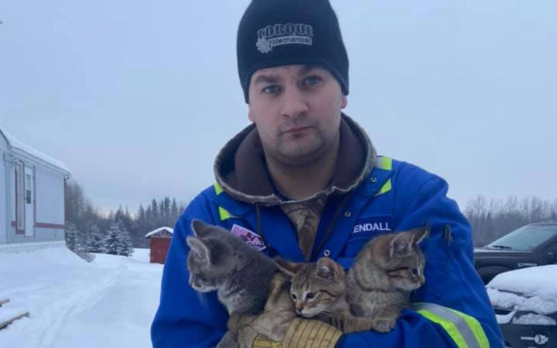 A photo of a man in a blue jacket and hat standing in snow and holding three rescued kittens