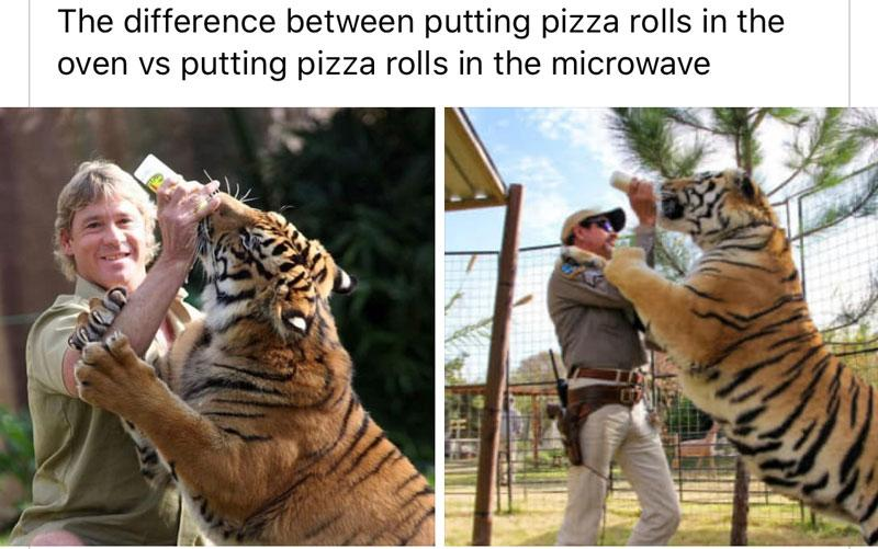 A Tiger King meme from social media