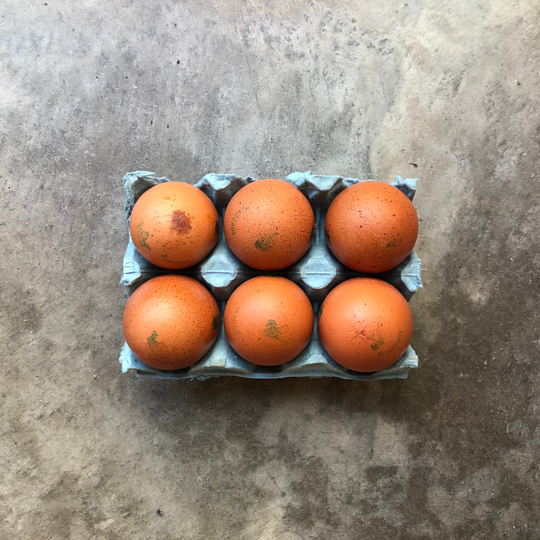 Burford Brown Eggs x 6