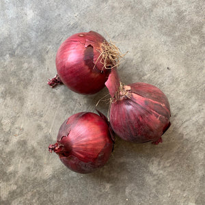 Red Onions /kg