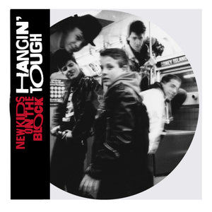 NEW KIDS ON THE BLOCK Hangin' Tough LP Picture Disc (NAD20)