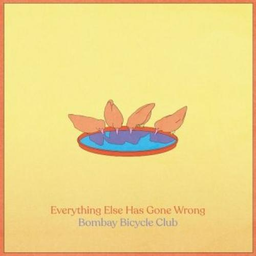 BOMBAY BICYCLE CLUB Everything Else Has Gone Wrong LP SET