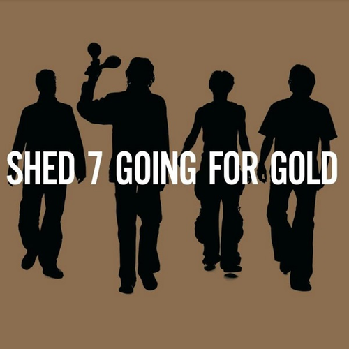 SHED SEVEN Going For Gold -The Greatest Hits 2 LP SET