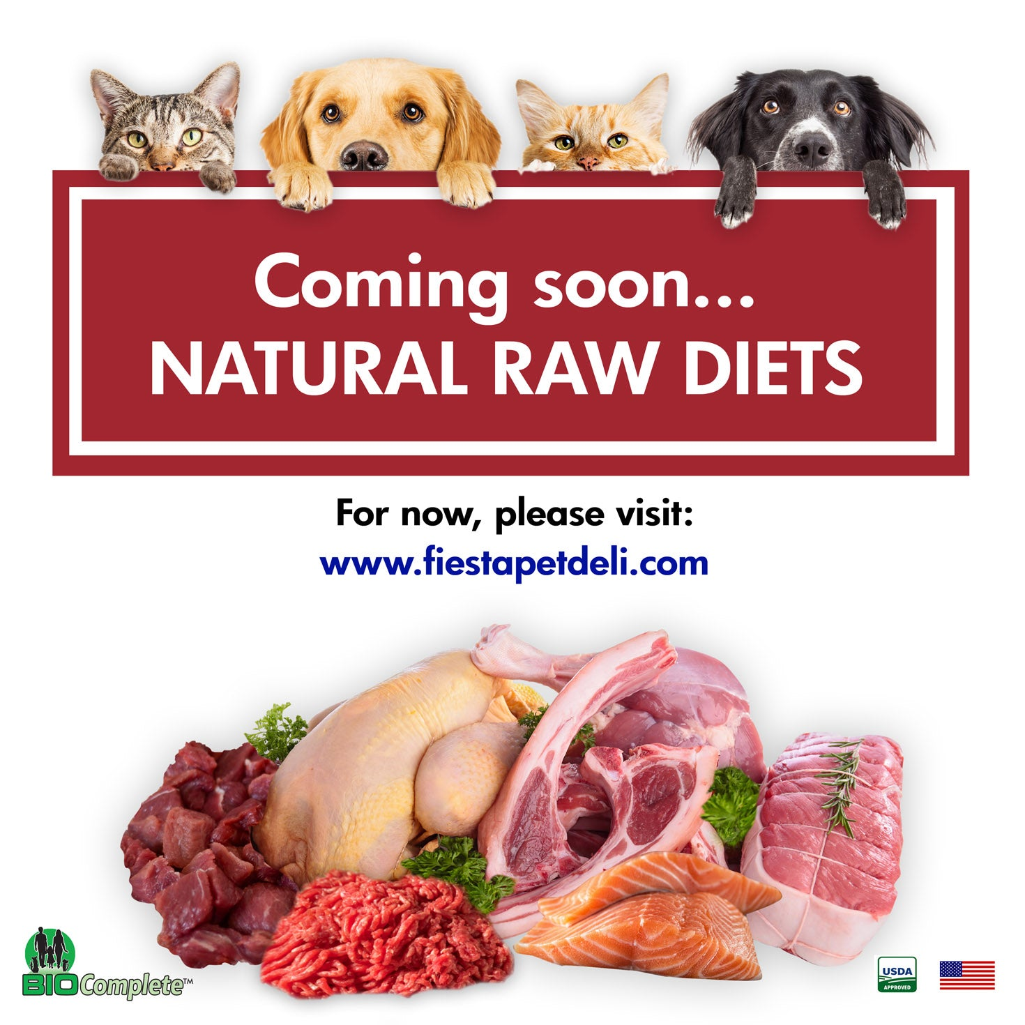 Raw Cat Food and Raw Dog Food in Fort Lauderdale Area