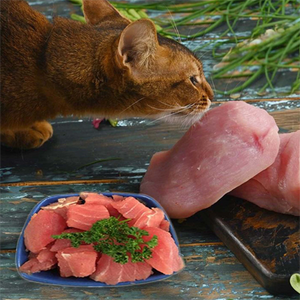 my-paleo-pet-Raw-Meat-With-Cat-pet-food-2