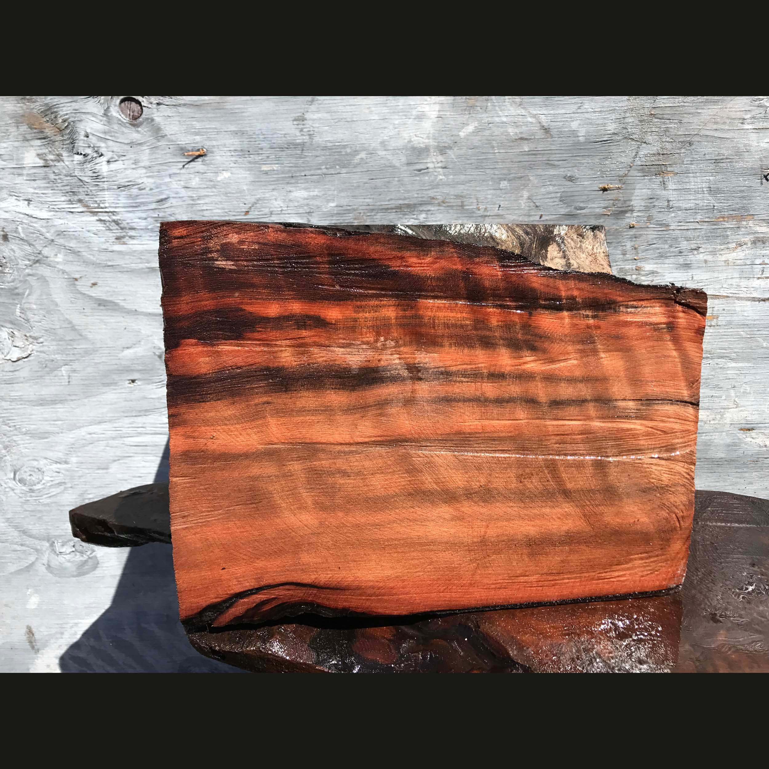 wood turning | lace burl redwood | craft wood - bl1015