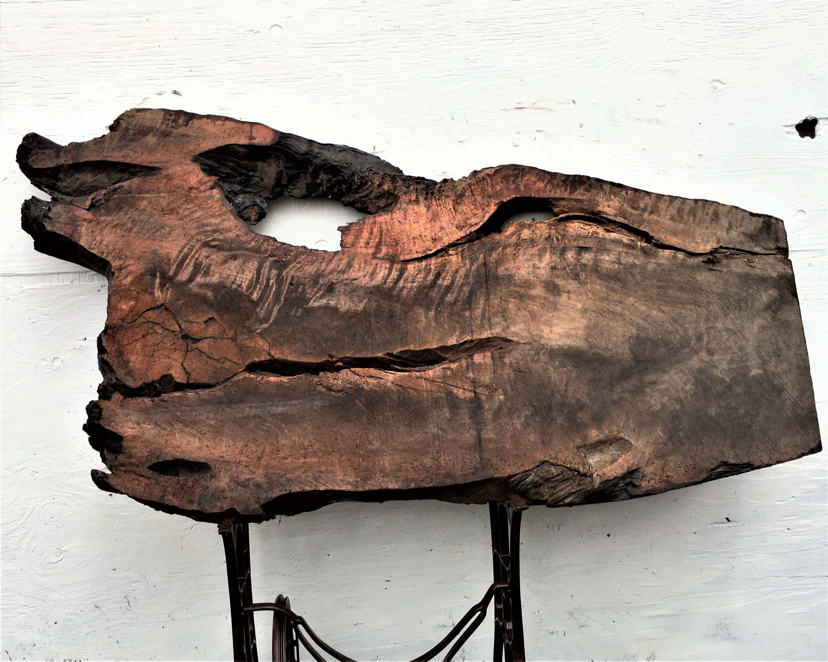 live edge redwood burl slab | river table | rustic table | bsz756