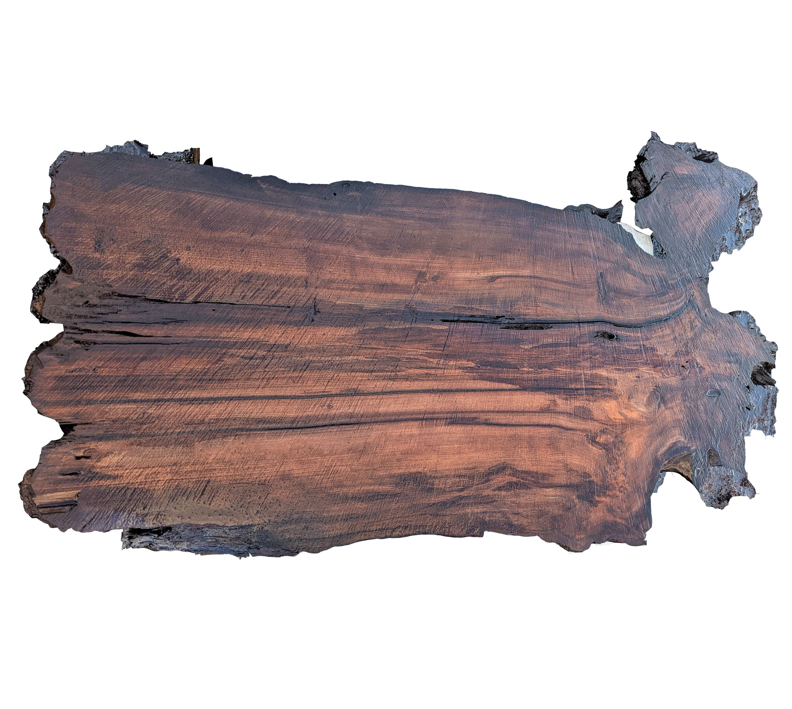 river table | Live edge burl slab - rustic redwood table - craft wood - bsZ1359