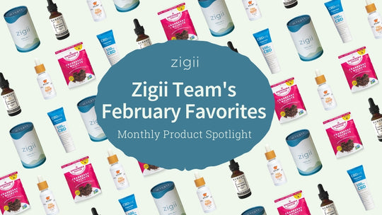 Our February Favorites: Monthly Product Spotlight