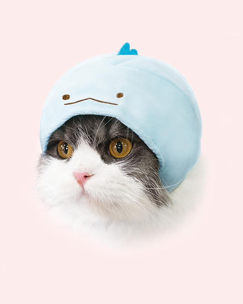 Cat is wearing a tokage (blue dino) cap.