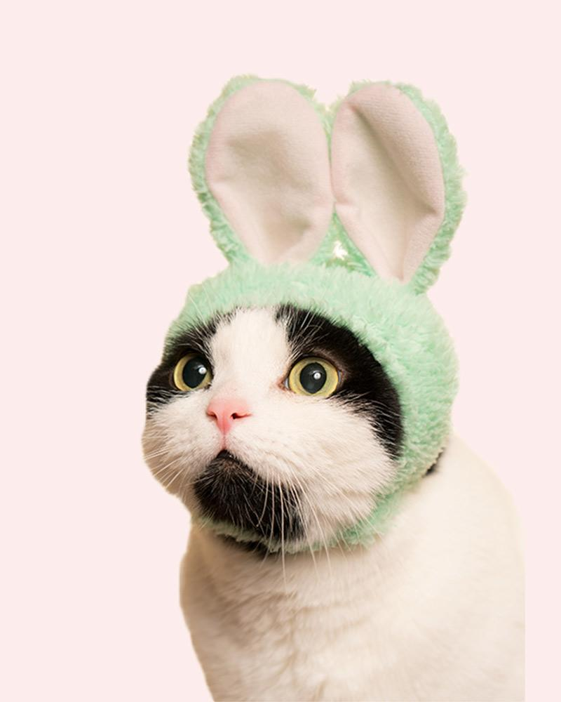 Kitan Club Cat Cap Blind Box: Rabbit
